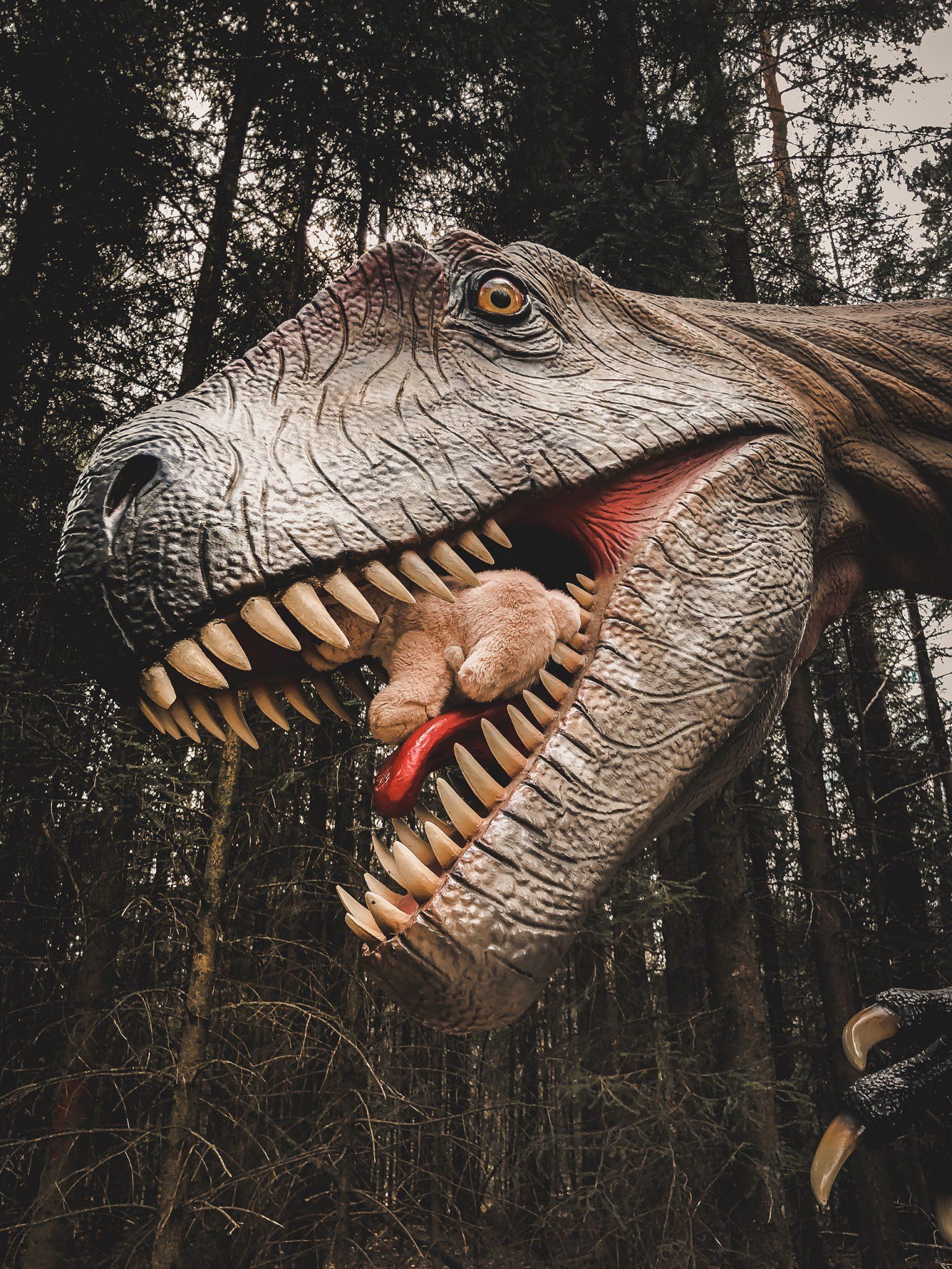 Dinosaurier Park im Altmühltal - Parkgelände mit Urzeittieren, Spielplatz, Skelette ausgraben und Shop - Mama Blog München 11