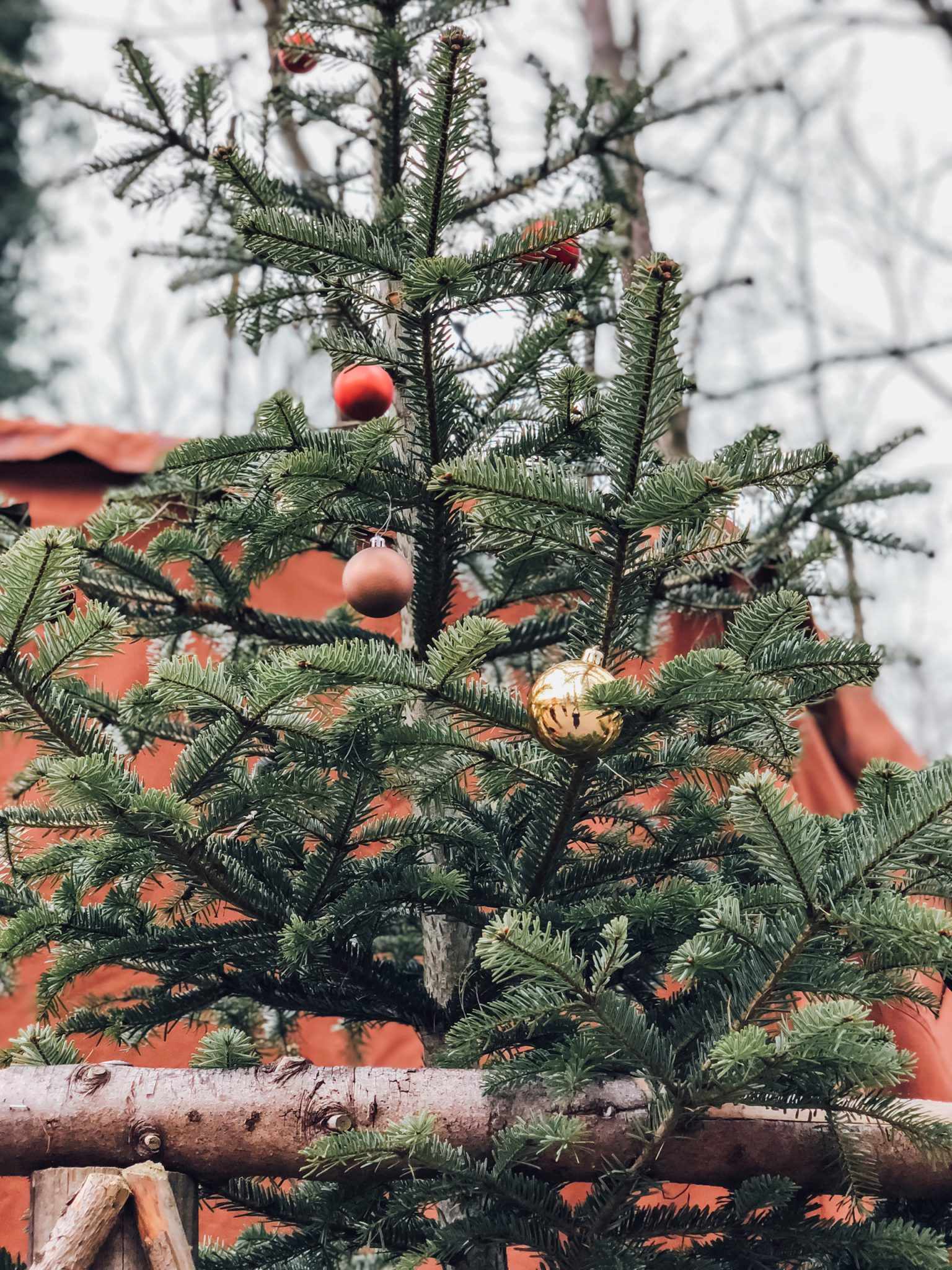 Kaltenberger Ritterturnier Märchenweihnachtsmarkt Schloss Kaltenberg Ausflugstipps für Familien - München mit Kind - Mama Blog 3